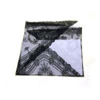 Image: Mary Todd Lincoln's shawl