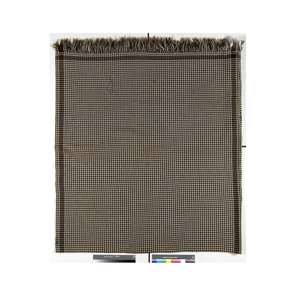Image: Abraham Lincoln's shawl