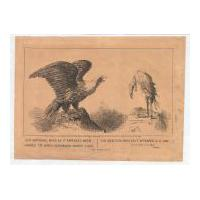 Image: Our National Bird as it Appeared When Handed to James Buchanan, March 4, 1857