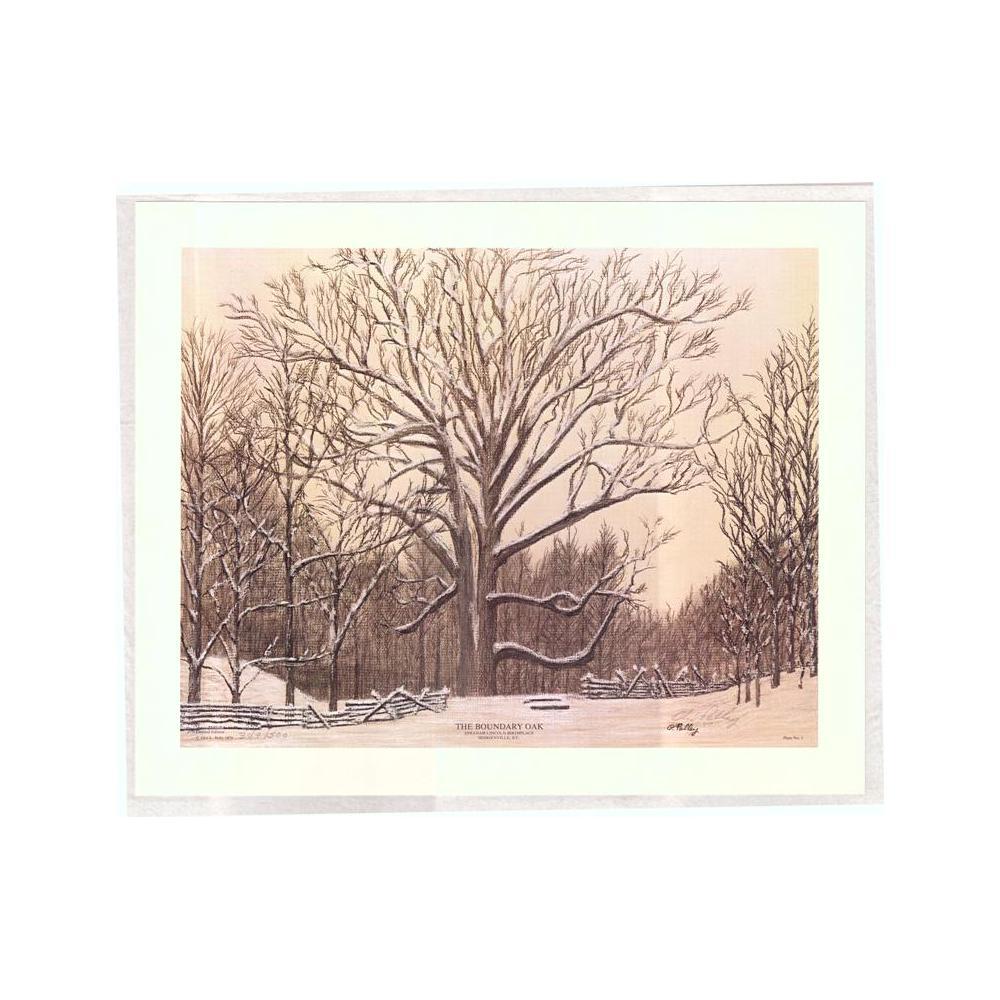 Image: The Boundary Oak