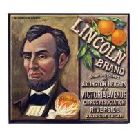 Image: Lincoln Brand Oranges advertisement