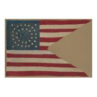 Image: Stanton's swallow-tail American flag pennant