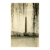 Image: Washington Monument., Washington, D. C.